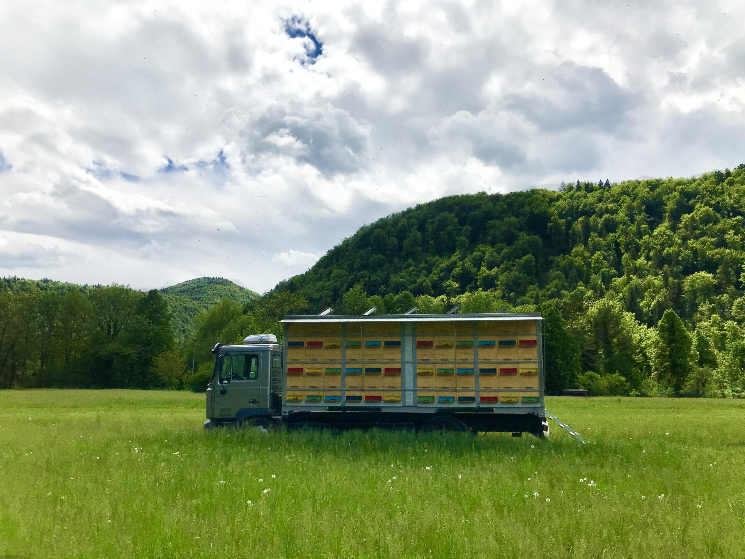 Urška Intihar beekeeping truck