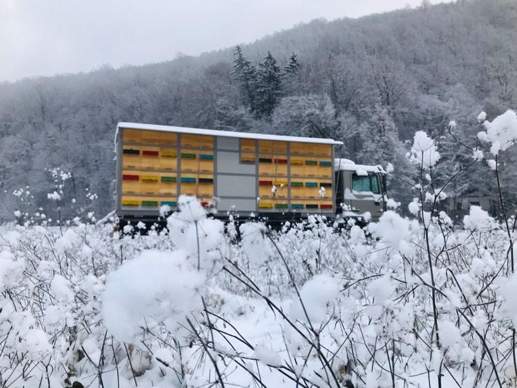 Beekeeping truck Intihar